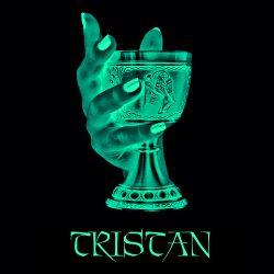 2013-TRISTAN-Logo